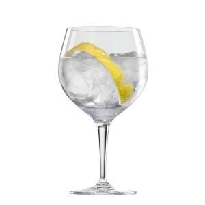 Gin tonic proeven, Alles over gin.
