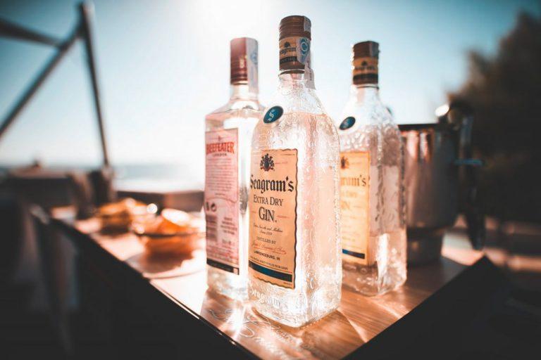 Gin ruiken en proeven, Alles over gin.