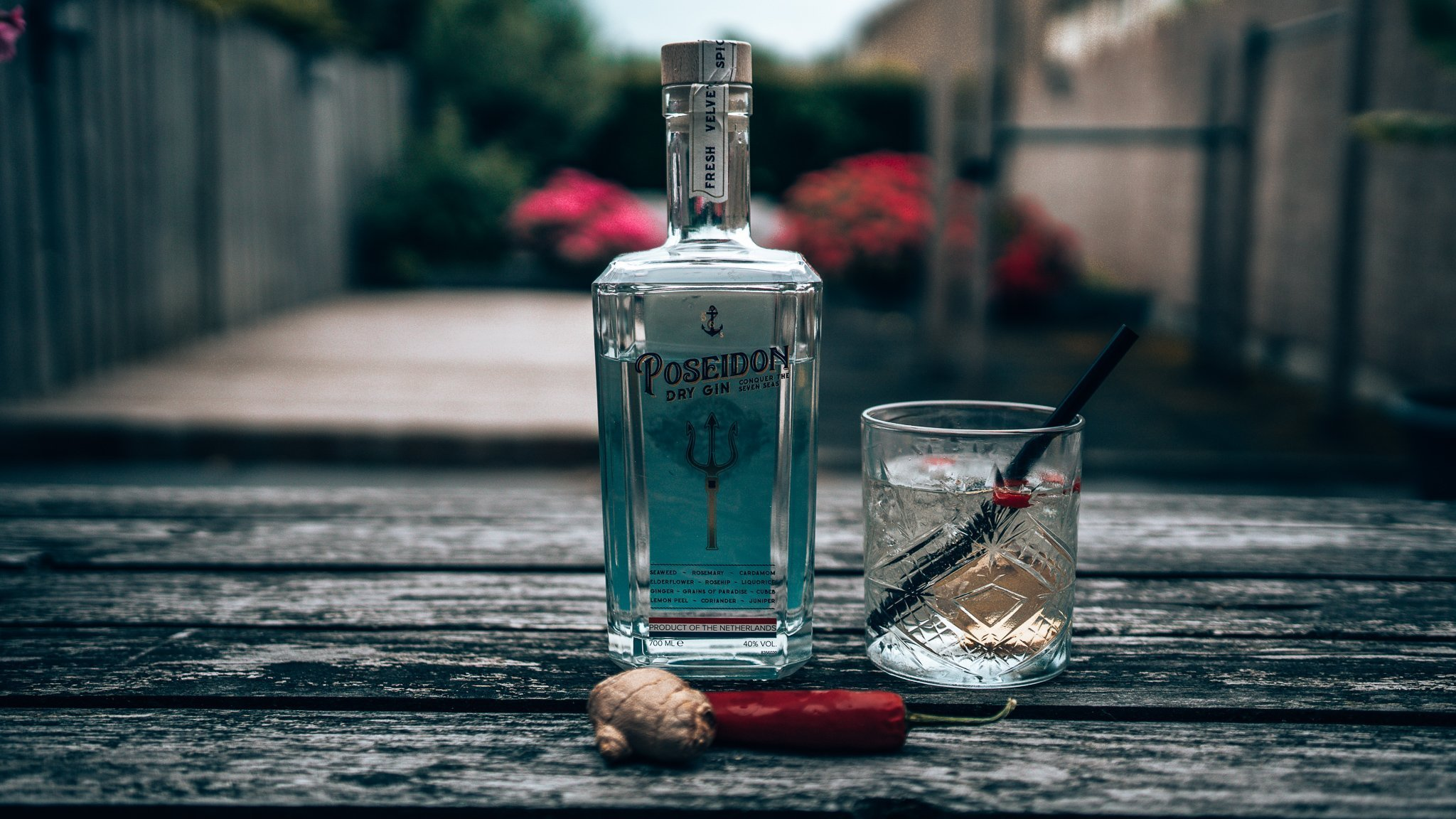 Spicy Poseidon & Ginger Ale, Poseidon Dry Gin perfect serve, Alles over gin.