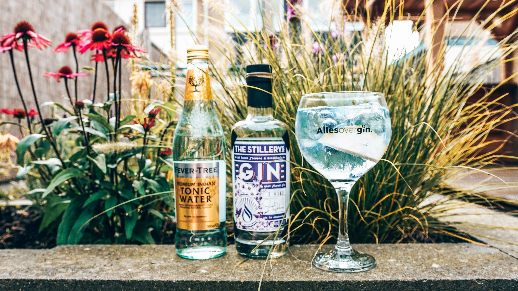 Perfect serve The Stillery's Gin, Alles over gin.