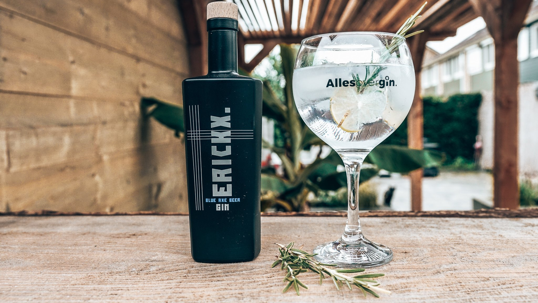 Erickx Gin perfect serve, Alles over gin.