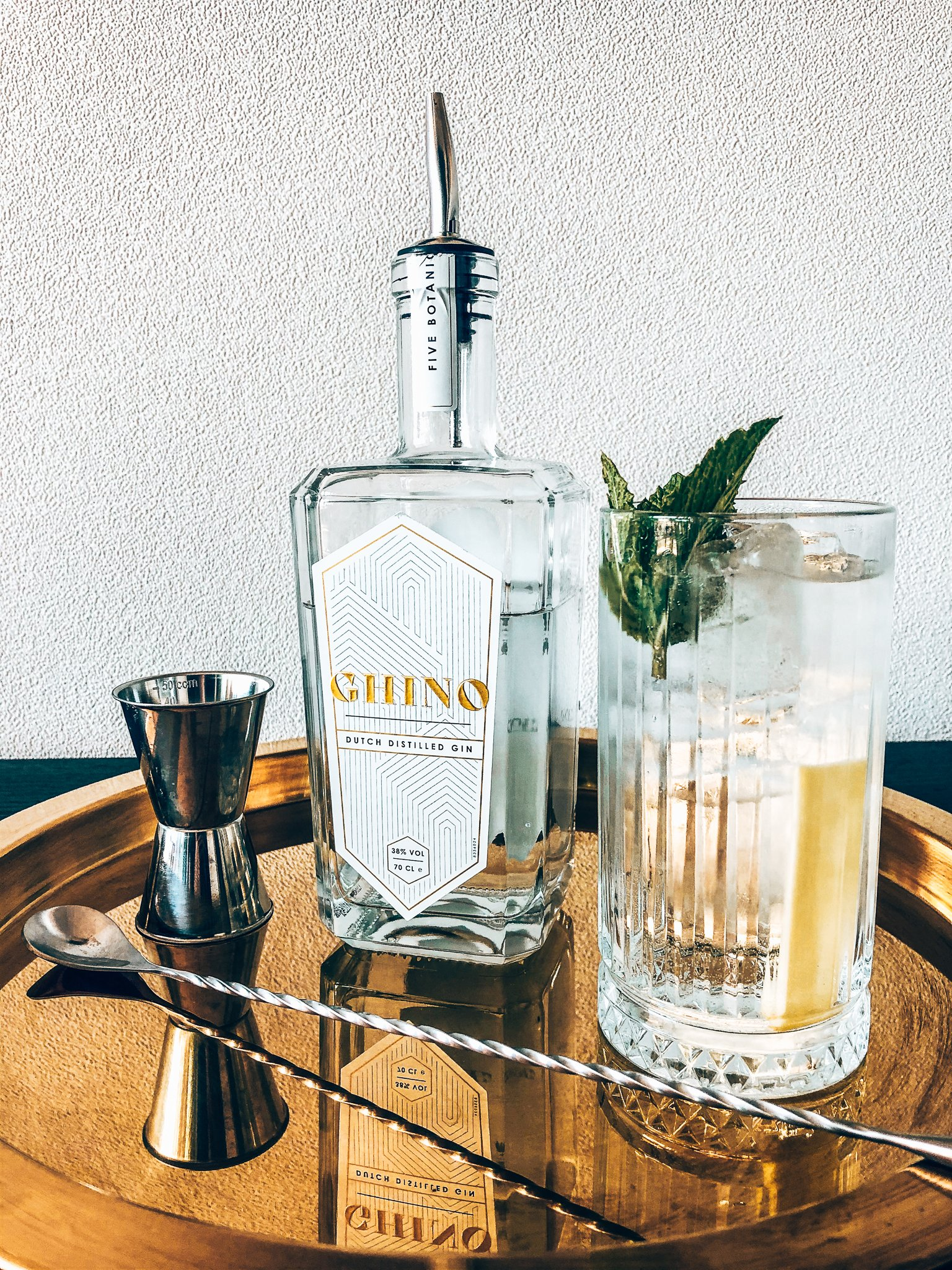 Perfect serve met Ghino Gin, Alles over gin.