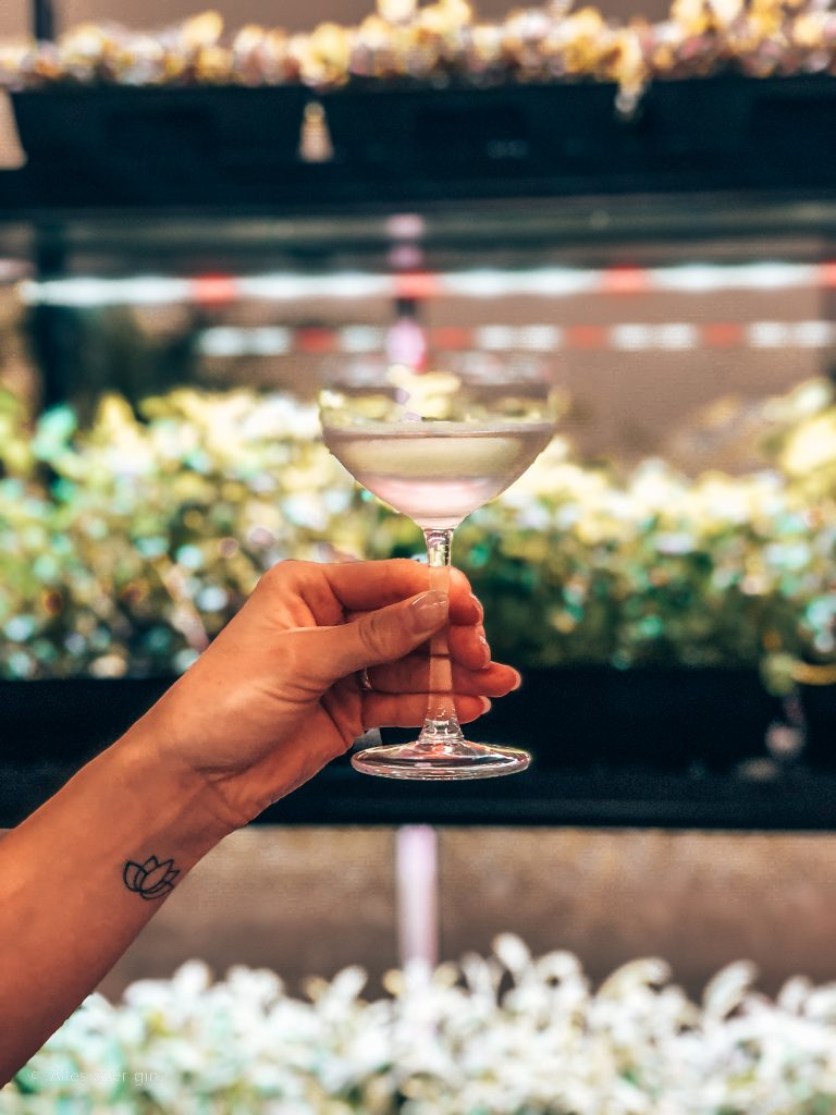 Botanical Martini, The Botanist Gin, Alles over gin.
