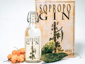 Gin story van Sopropo Gin, Moonshine Rotterdam, Alles over gin.