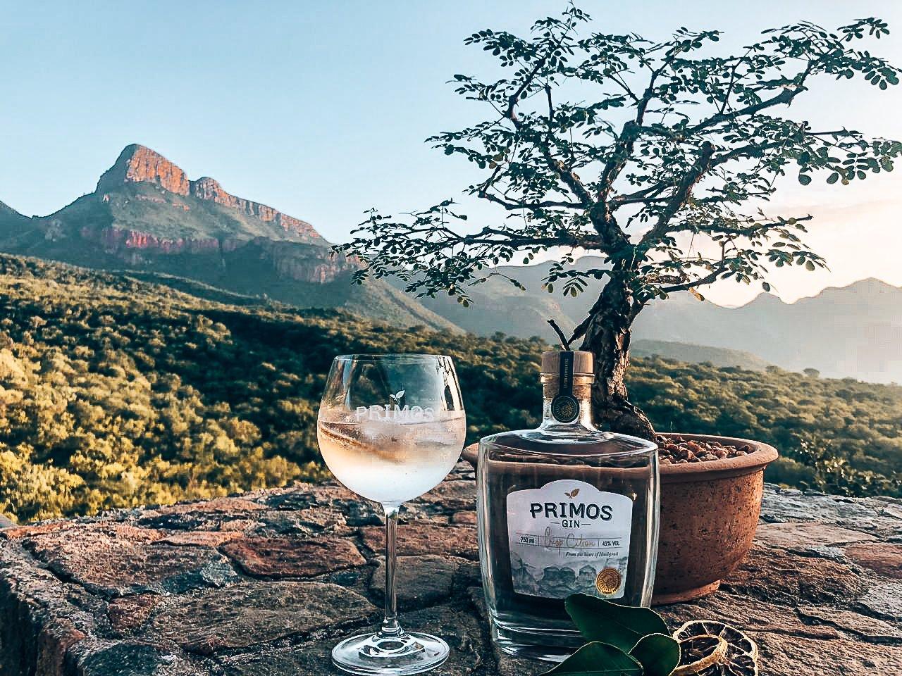 Het verhaal achter Primos Gin, Zuid Afrika, Alles over gin.