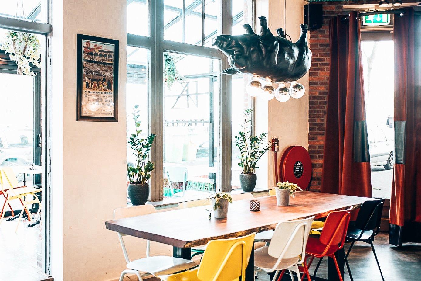 Het restaurant van Taberna Pikoteo, Alles over gin.
