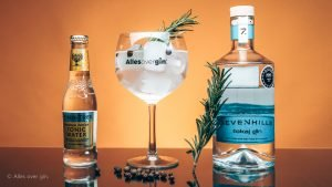 Gin-tonic recept, Tokaj's serve met Tokaj GIN, Alles over gin.