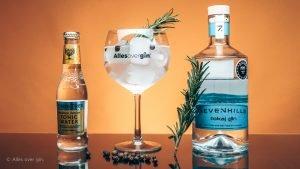 Gin-tonic recept, Tokaj's serve met Tokaj GIN, Alles over gin.
