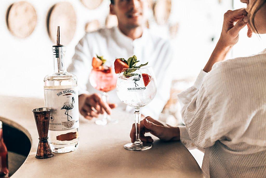 Sir Edmond Gin, Gin-tonic, Alles over gin.